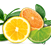 Airwick_Fragrances_1.1_Citrus.png